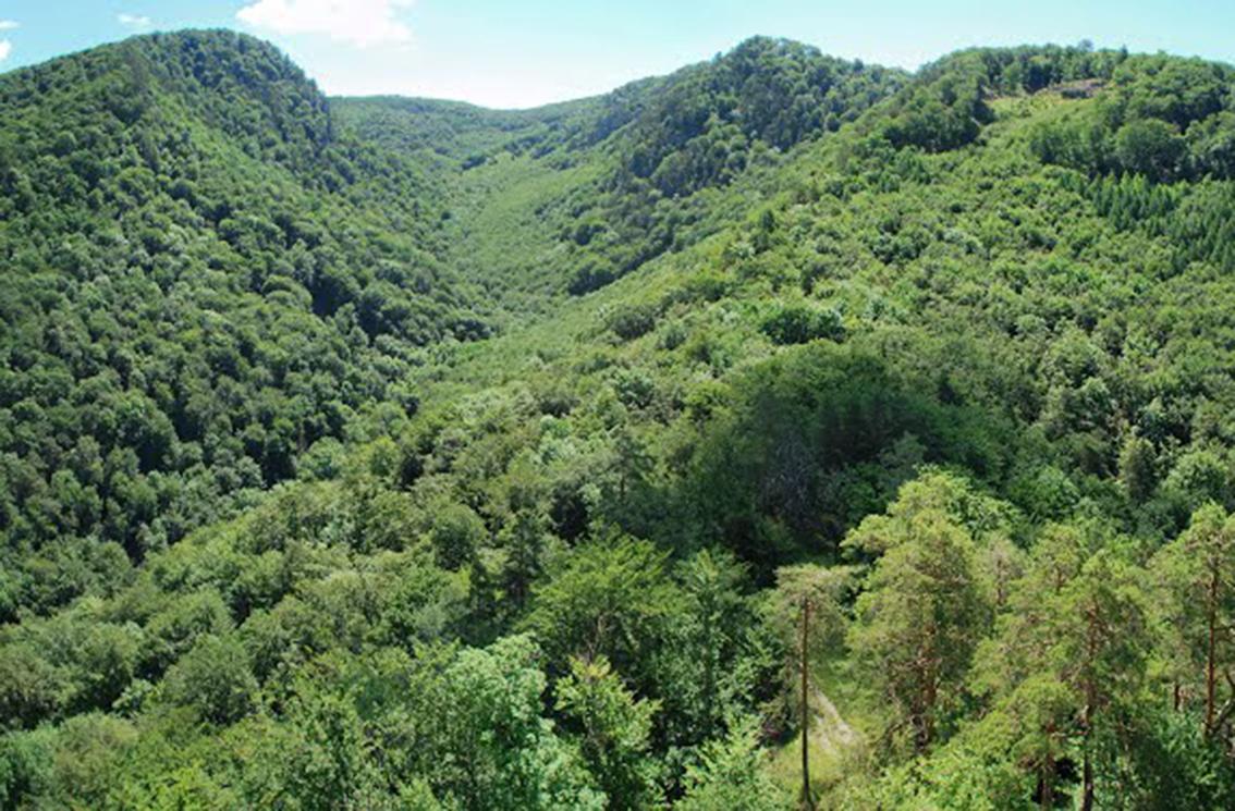 Výhľad na Strážovské vrchy