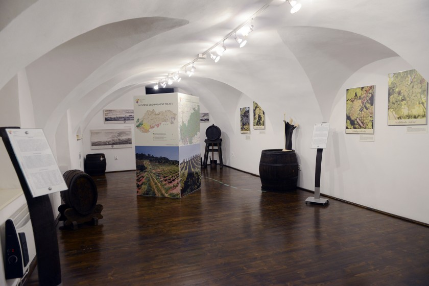 Malokarpatské múzeum vPezinku
