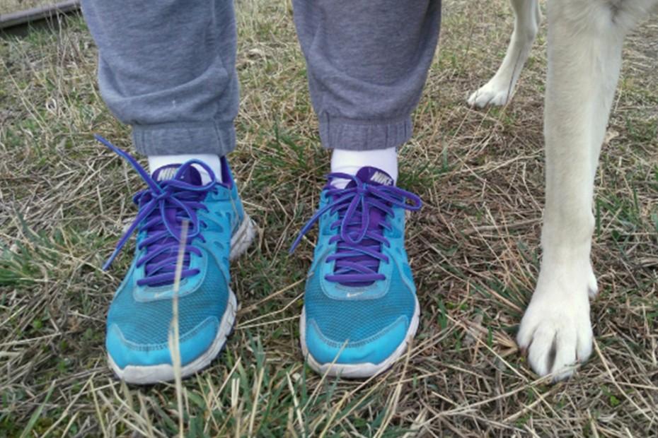 ľudské a psie nohy