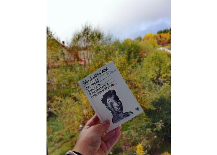 kniha Nie som básnik od Petra Altofa