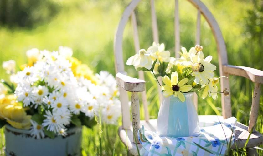 kvety, drevená stolička